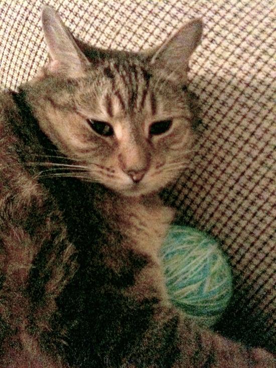 Yogi-ball-grainy